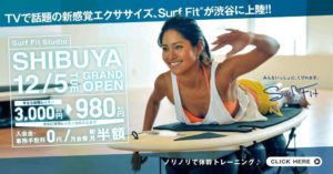 surf-fit-japan-price